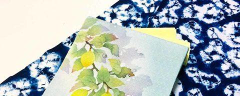 combinacion-kimono