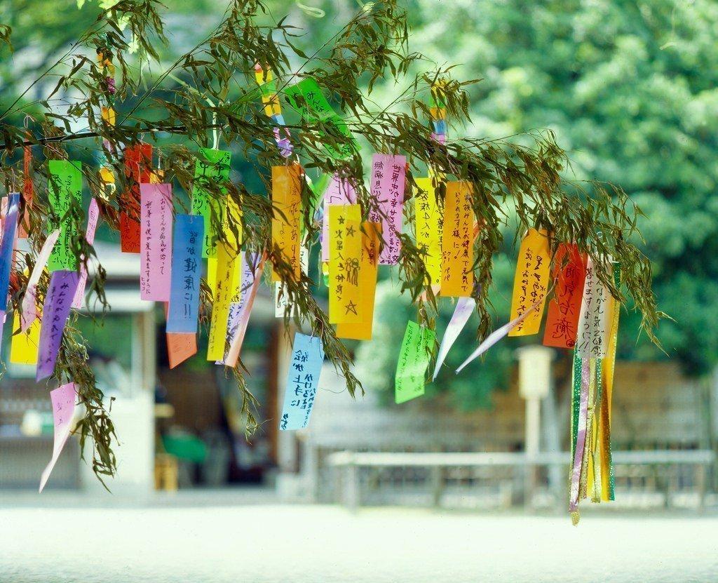 tanzaku tanabata